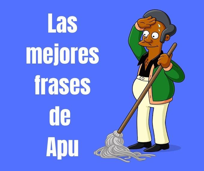 Las mejores Frases de Apu