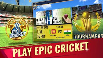 Epic Cricket Custom Tour