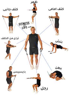 الحفاظ علي الكتلة العضلية