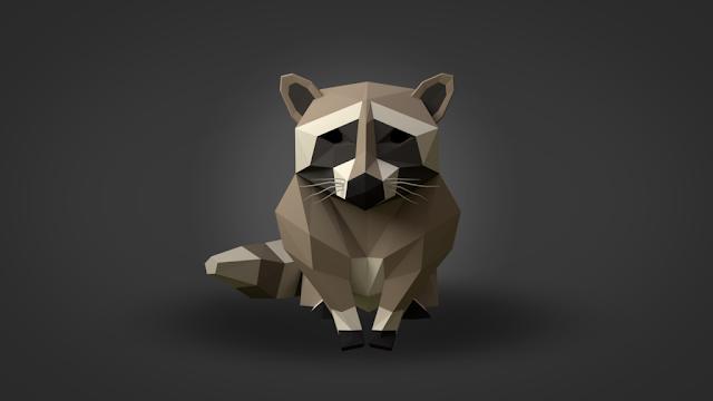 Raccoon attack