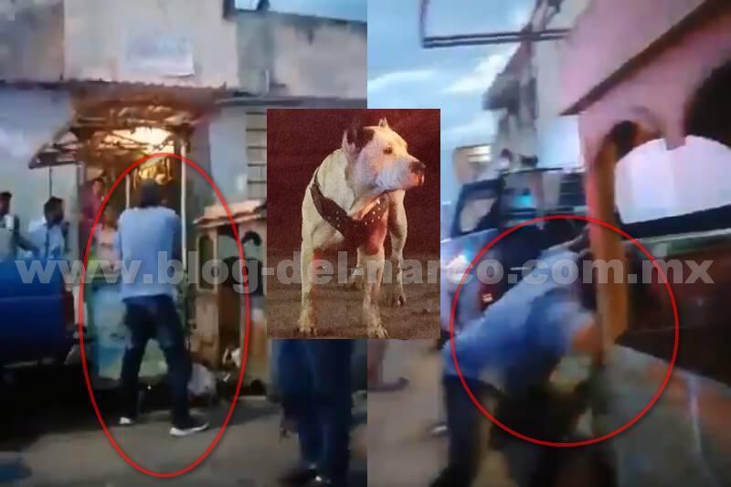 Indignante! asi Dueño apuñaló a su perrito cuando este lo mordió por haberlo molestado en Puebla; el perrito perdió  la vida cuando era atendido