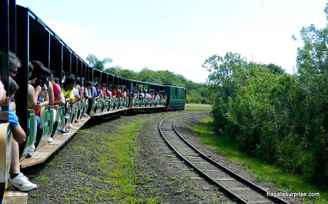 Trem ecológico que transporta os turistas no lado argentino das cataratas do Iguaçu