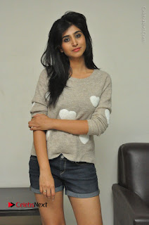 Actress Model Shamili (Varshini Sounderajan) Stills in Denim Shorts at Swachh Hyderabad Cricket Press Meet  0003.JPG