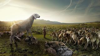 Ovelhas, Lobos, Serpentes e Pombas