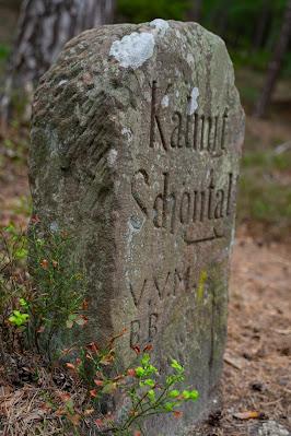 Kalmit-Felsenmeer-Tour | Maikammer | Wanderung Südliche Weinstraße 03