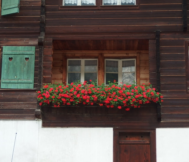 A windowbox crammed with red pelargoniums