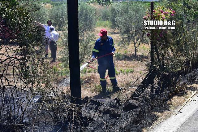 Αργολίδα: Πυρκαγιά στην Αγία Τριάδα