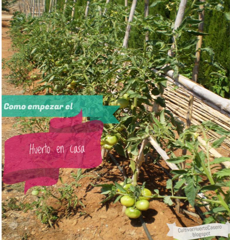 Cultivar el huerto casero como comenzar con el huerto en casa - El huerto en casa ...