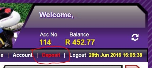 Click on the DEPOSIT button on the Hollywoodbets website