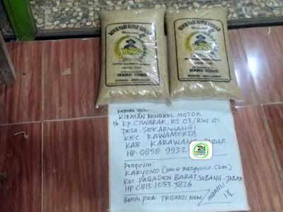 Benih padi yang dibeli   KIRMAN BENGKEL MOTOR Karawang, Jabar.  (Sebelum packing karung).