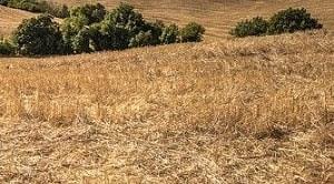 Beberapa pengertian lahan kritis menurut para ahli adalah gangguan yang terjadi pada kawasan baik itu di dalam kawasan hutan maupun di luar kawasan.