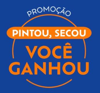 https://www.pintousecousuvinil.com.br/
