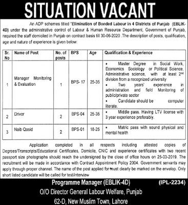 Labour & Human Resource Department Punjab Jobs 2019