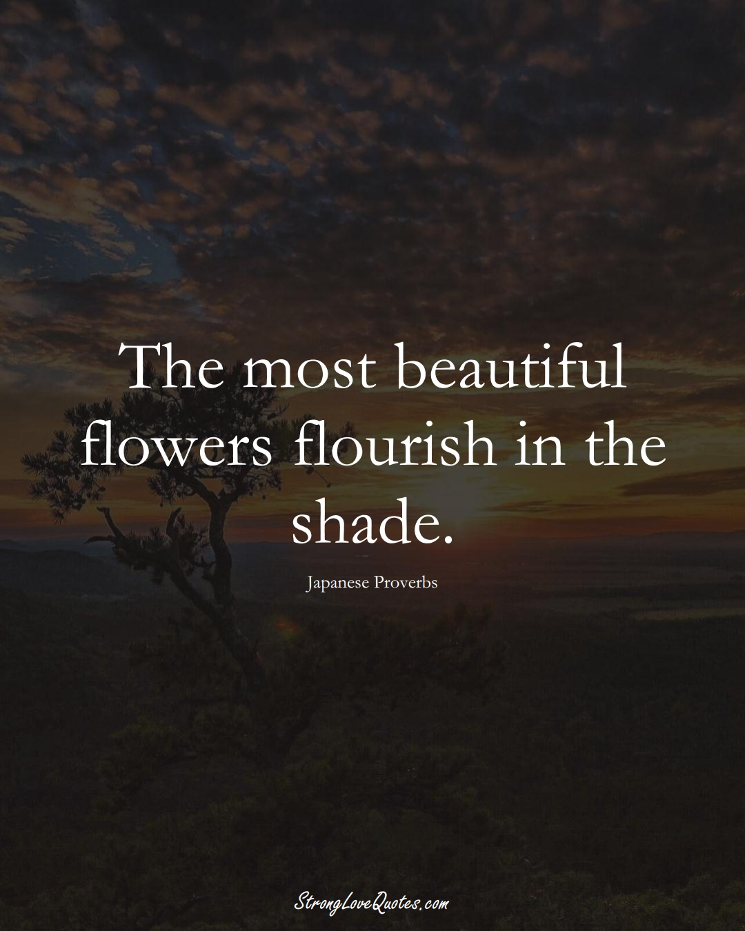 The most beautiful flowers flourish in the shade. (Japanese Sayings);  #AsianSayings
