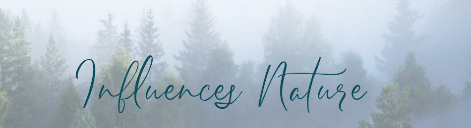 Influences nature, le blog