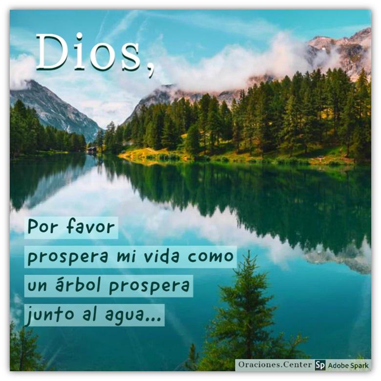 La Biblia Salmo 1 - Una Oración de Prosperidad