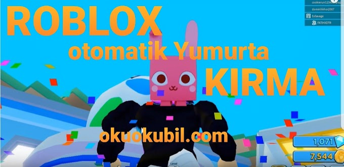 Roblox Otomatik Yumurta Kırma Makro Hilesi 03 Aralık