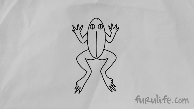 How to draw frog step 07 final
