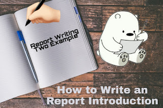 How to Write an Report Introduction - Report Writing Example for Students