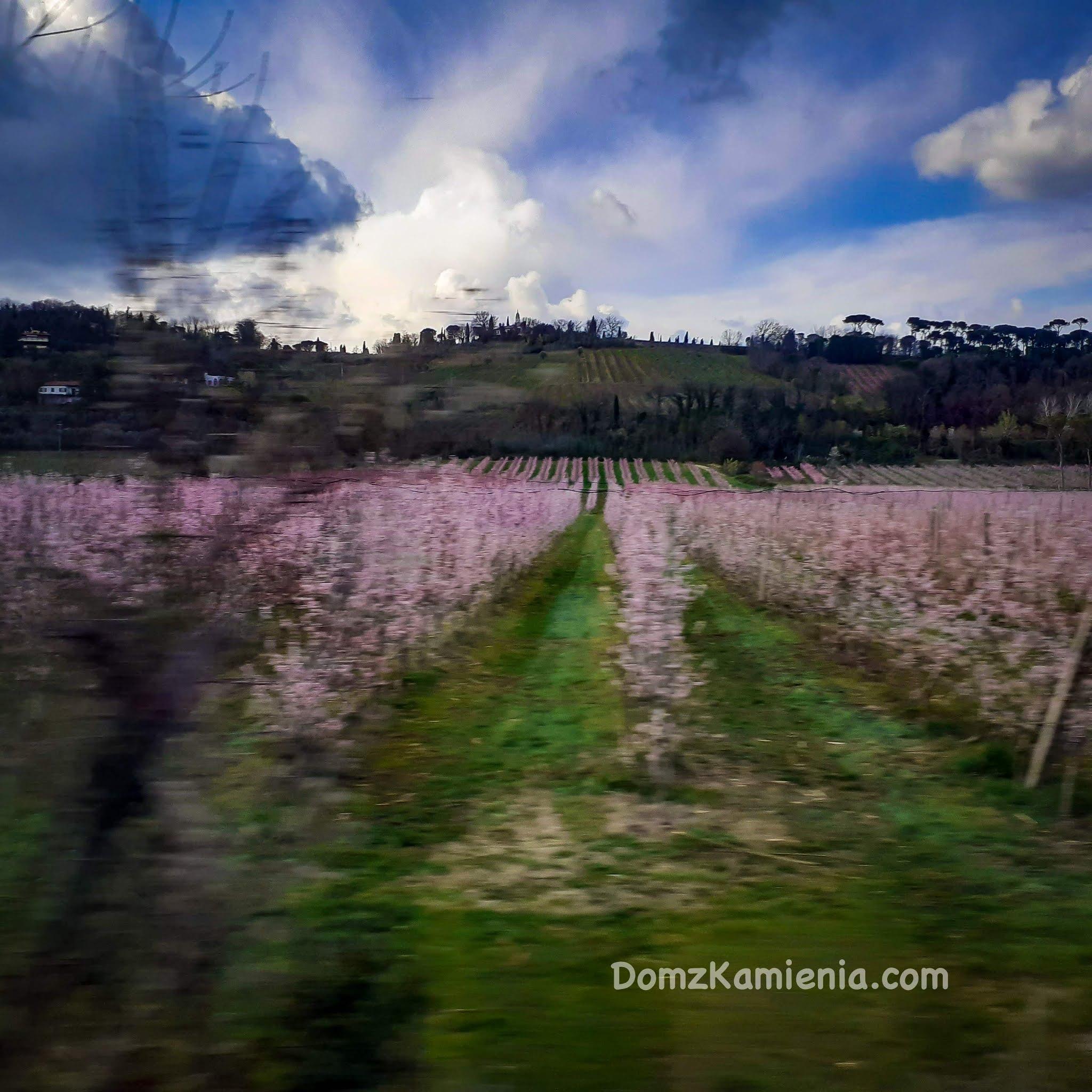 Faenza Dom z Kamienia, blog o życiu w Toskanii