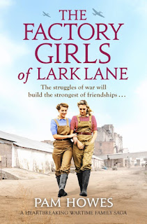 The Factory Girls of Lark Lane book cover
