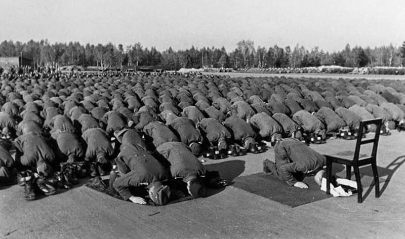 DP, Almanların yahudi katliamı, Nazilere yardım eden, Yahudi katliamı ve Filistin, yahudilik, El-Hüseyni, islamiyet, din, tarih, Adolf Hitler soykırım, Hitlerle işbirliği, Müslüman naziler,