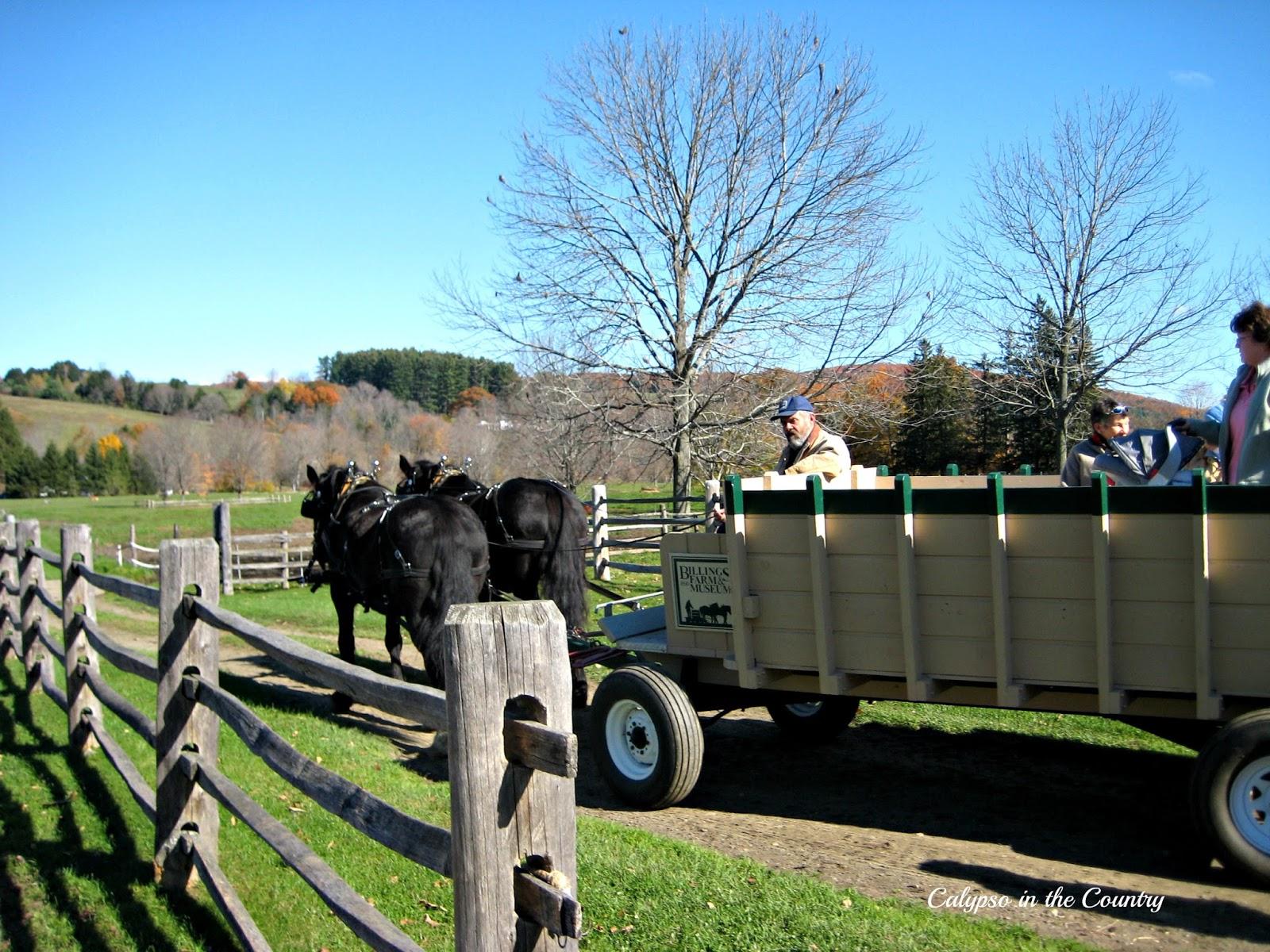 Fall Hayride - Billings Farm, Woodstock, VT