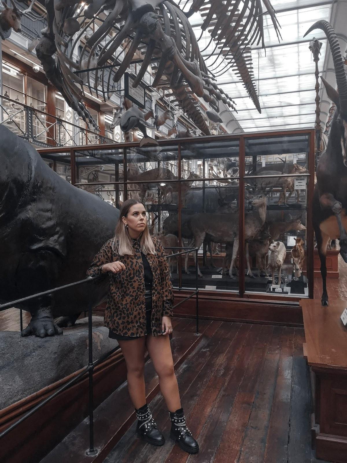 Museo Historia Natural Dublin