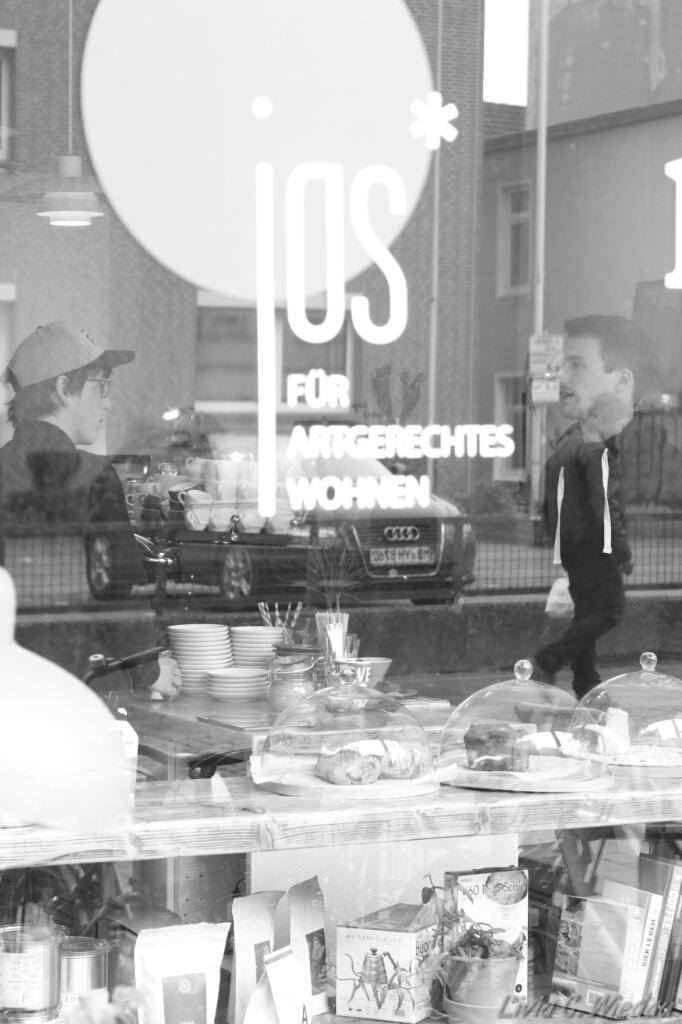 k the kaffee in der kaiserstra e vegan fair essen und trinken der oldenburg blog. Black Bedroom Furniture Sets. Home Design Ideas
