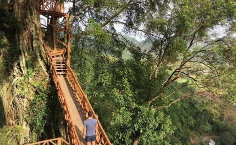 5 Lokasi Destinasi Di Bogor Yang Bagus Untuk Berselfi