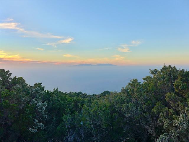 Fayal-Brezal Büsche im Vordergrund. Blick über den Atlantik nach La Palma, Insel mit 2 markanten Erhebungen.
