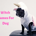 Witch Names For Dogs | Best Witch Dog Names