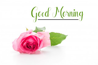 Good Morning Royal Images Download for Whatsapp Facebook50