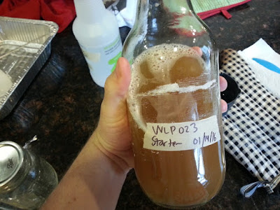 Yeast starter in a 40 oz bottle