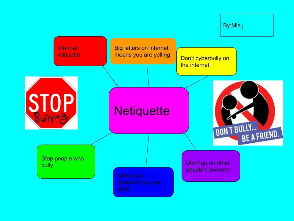 examples of internet etiquette