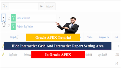 Hide Interactive Grid And Interactive Report Setting Area in Oracle APEX