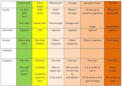 #Classedugout agrumes 2