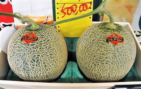 Image result for Melon Yubari King