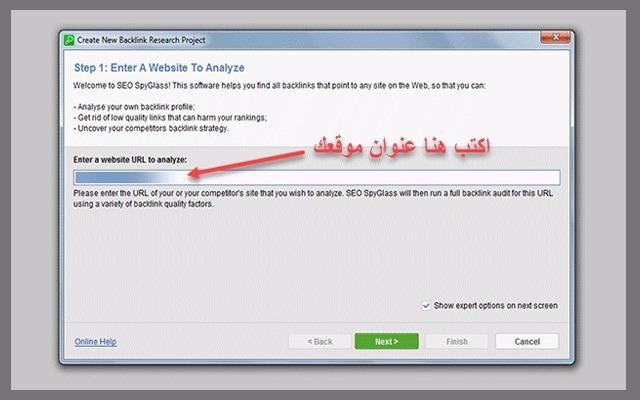 طريقة استخدام برنامج WebSite Auditor
