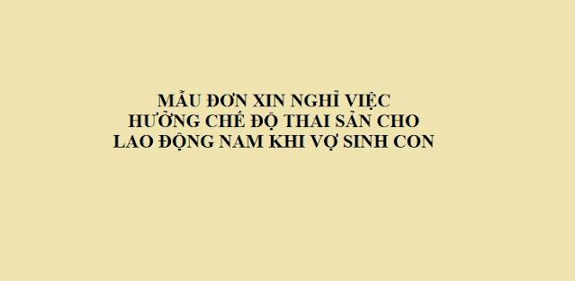 MẪU ĐƠN XIN NGHỈ VIỆC HƯỞNG CHẾ ĐỘ THAI SẢN CHO LAO ĐỘNG NAM KHI VỢ SINH CON - LUẬT TÂN SƠN