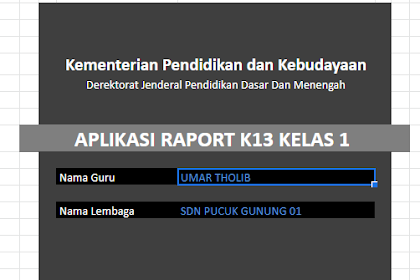Aplikasi Raport K13 SD Kelas 1,2,3,4,5 dan 6 Semester 1/2 (Kurikulum 2013) Format Excel Lengkap