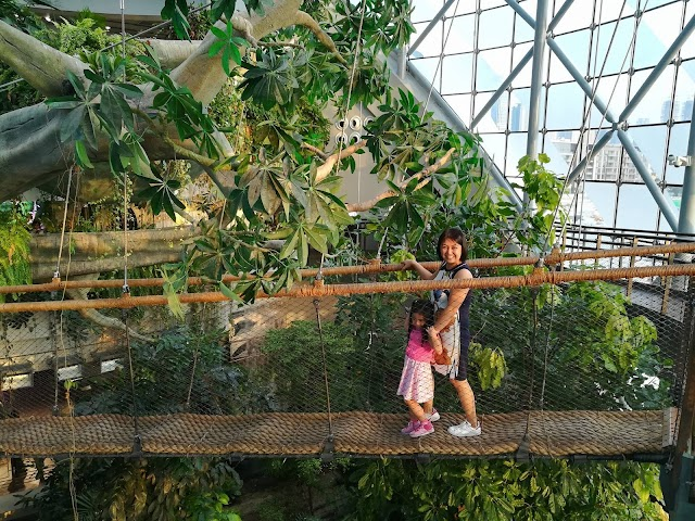 VIDEO: A visit to The Green Planet, Dubai