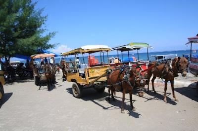 Transportasi Menuju ke Pantai Pink Lombok