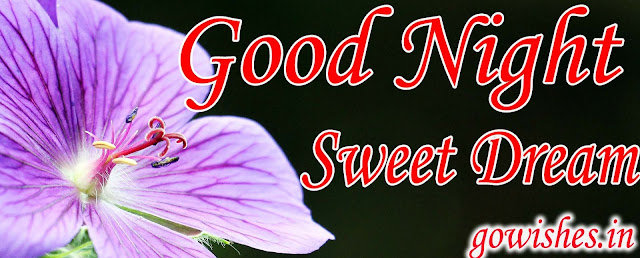 Good night wishes Image wallpaperToday 07-12-2018