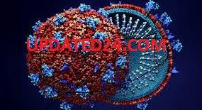 CORONAVIRUS UPDATES IN SINGRAULI, CORONA IN SINGRAULI, UPDATED 24 NEWS, MP CORONA