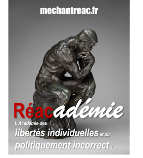 http://www.mechantreac.fr/1/les_reacademiciens_1315395.html