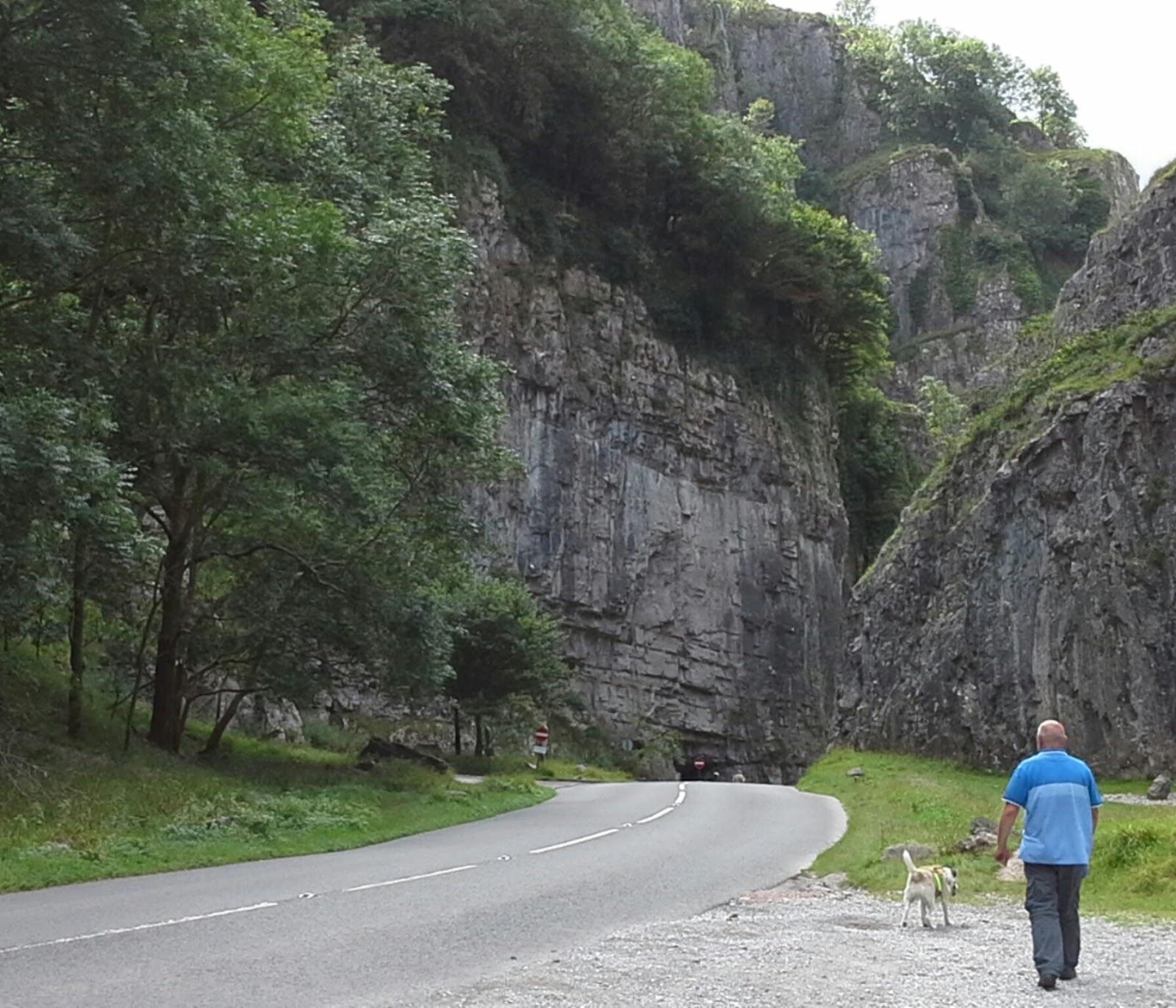 Dog Friendly Caravan Sites Donegal