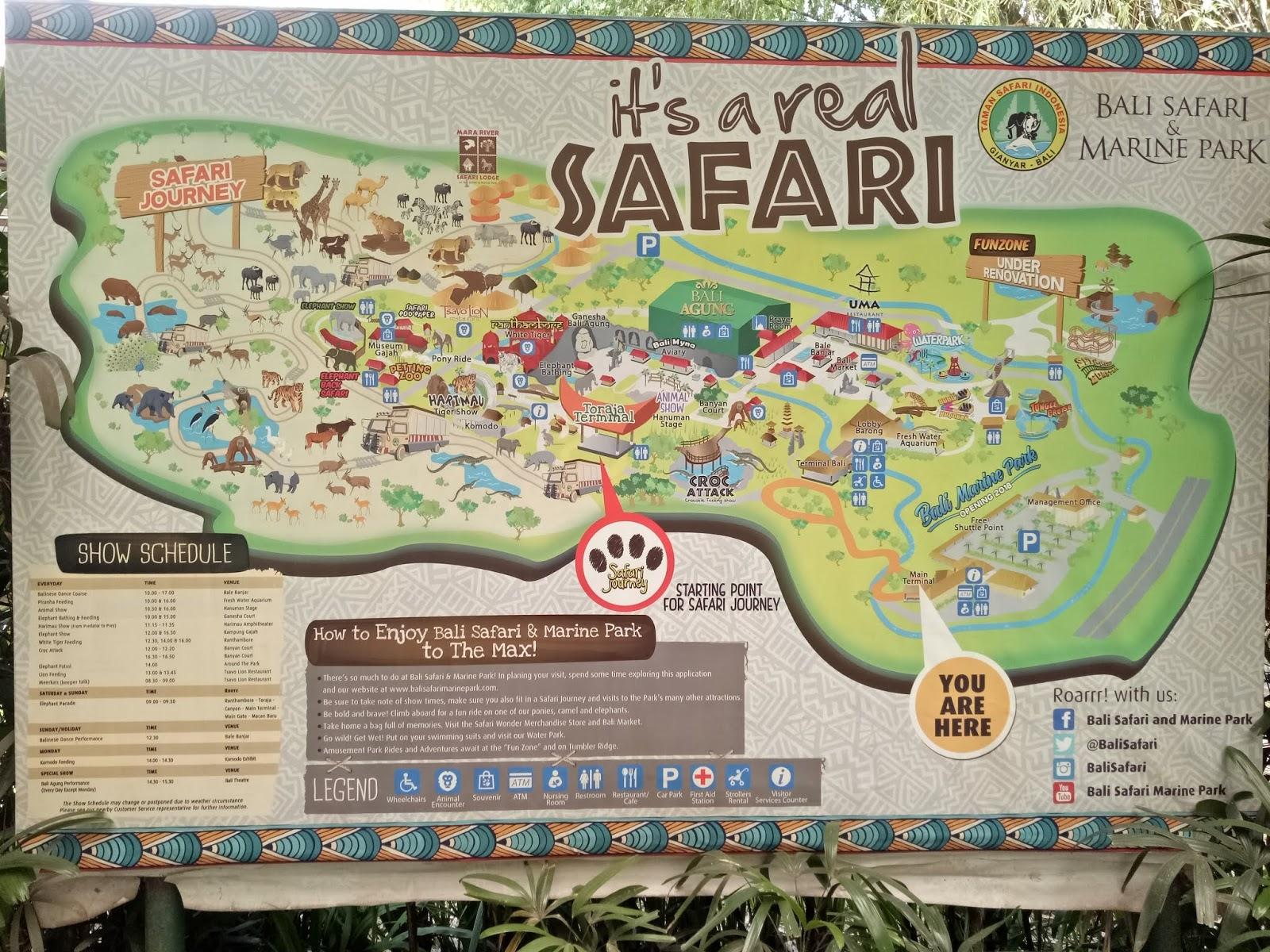 Wisata Ke Taman Safari Dan Bali Safari And Marine Park Apa Bedanya
