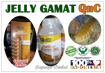 Agen Resmi Jelly Gamat QnC