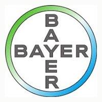Lowongan Kerja S1 Terbaru di PT Bayer Indonesia Jakarta Selatan September 2020